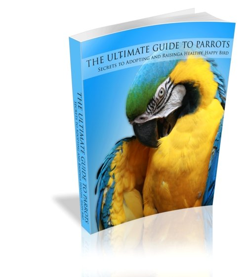 Product picture The Ultimate Guide To Parrots
