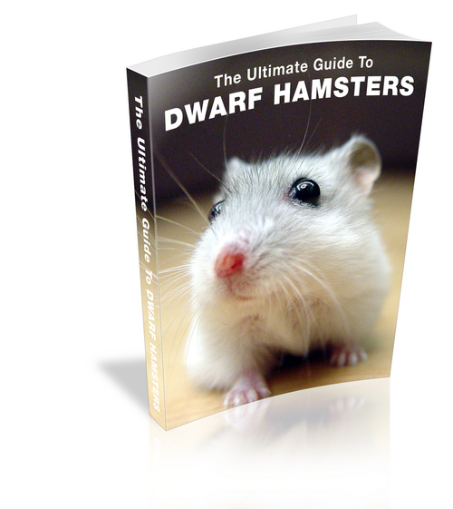 Product picture The Ultimate Guide to Dwarf Hamster